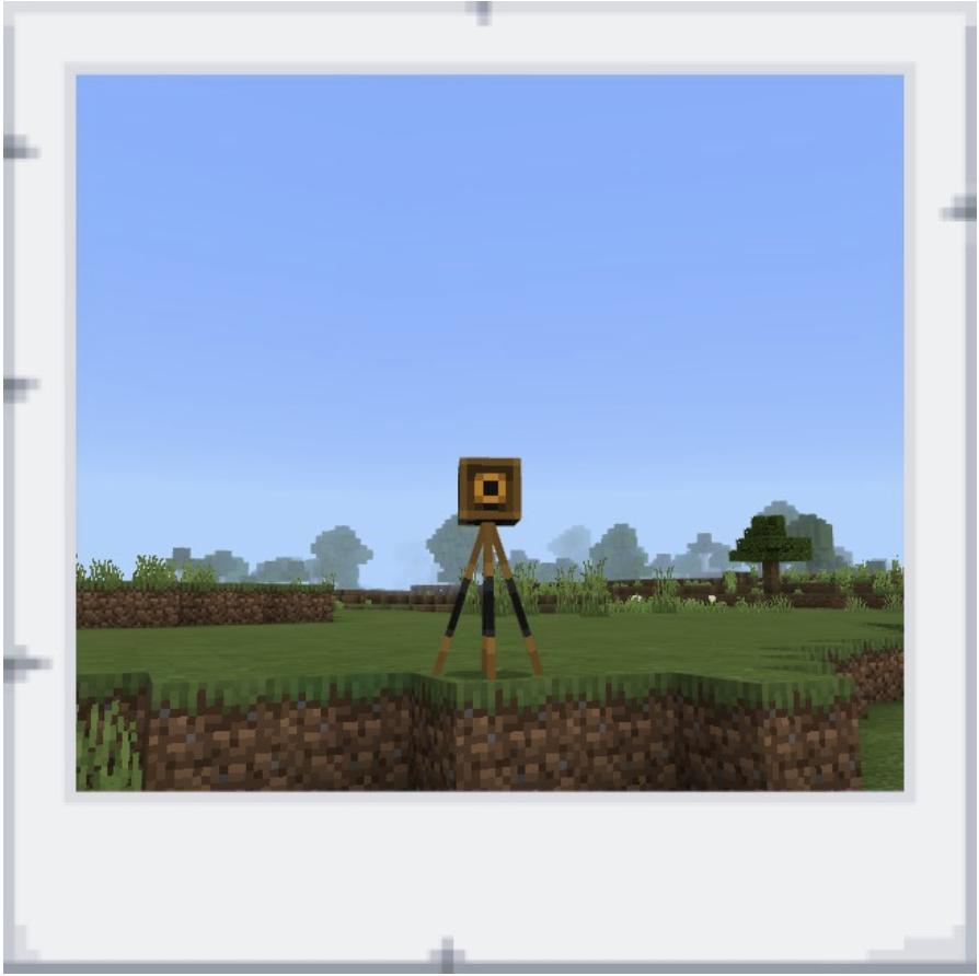 Minecraft education selfie camera